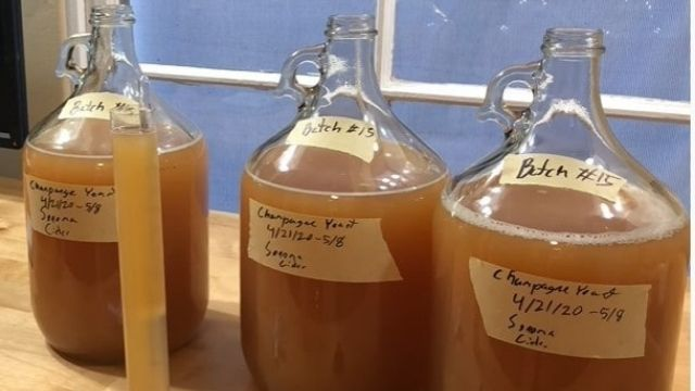 Easy Cyser Recipe for Apple Cider Mead